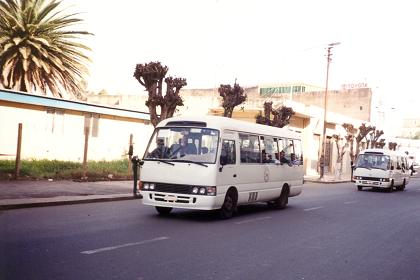 Busses of Gemel Public Transport