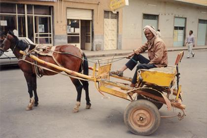 Horse-drawn gharis near the covered market of Asmara