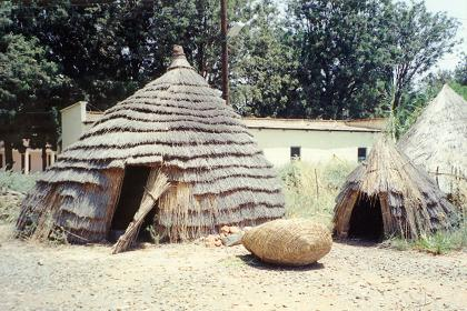 Replica of a Gebaza, a traditional Eritrean rural  dwelling at the Expo area - Asmara Eritrea.